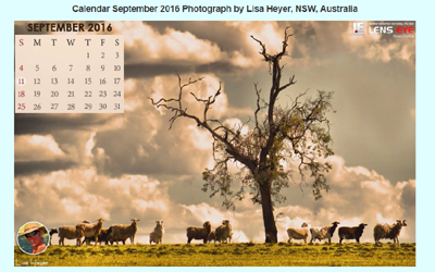 Lens Eye's  e- Calender : September - 2016 :: Lisa Heyer [ NSW, Australia ]