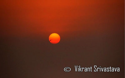 Photo of the Day :: Vikrant Srivastava - Gurgaon