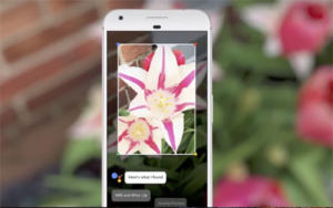 Google Lens :: A New initiative by Google
