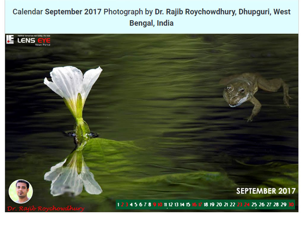 Lens Eye's  e- Calender : September - 2017 :: Dr. Rajib Roychowdhury [  Dhupguri, West Bengal, India ]