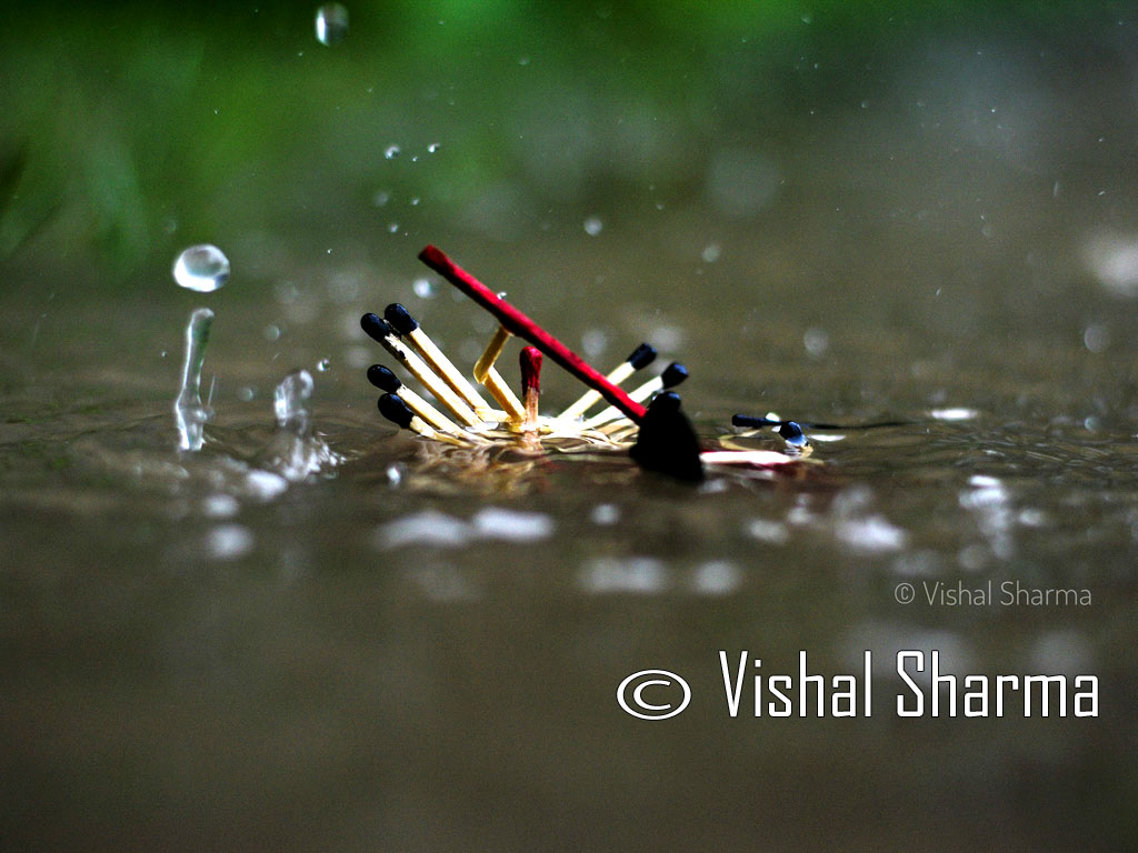 Photo of the Day :: Vishal Sharma - Assam