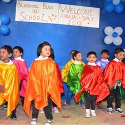Annual Day Celebration in Blomming Buds (N) School.