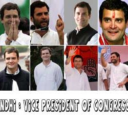 Rahul Gandhi : Vice President of Congress party.