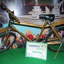 Bamboo Cycle at the Jharkhand Pavilion in IIFT, New Delhi is a big hit